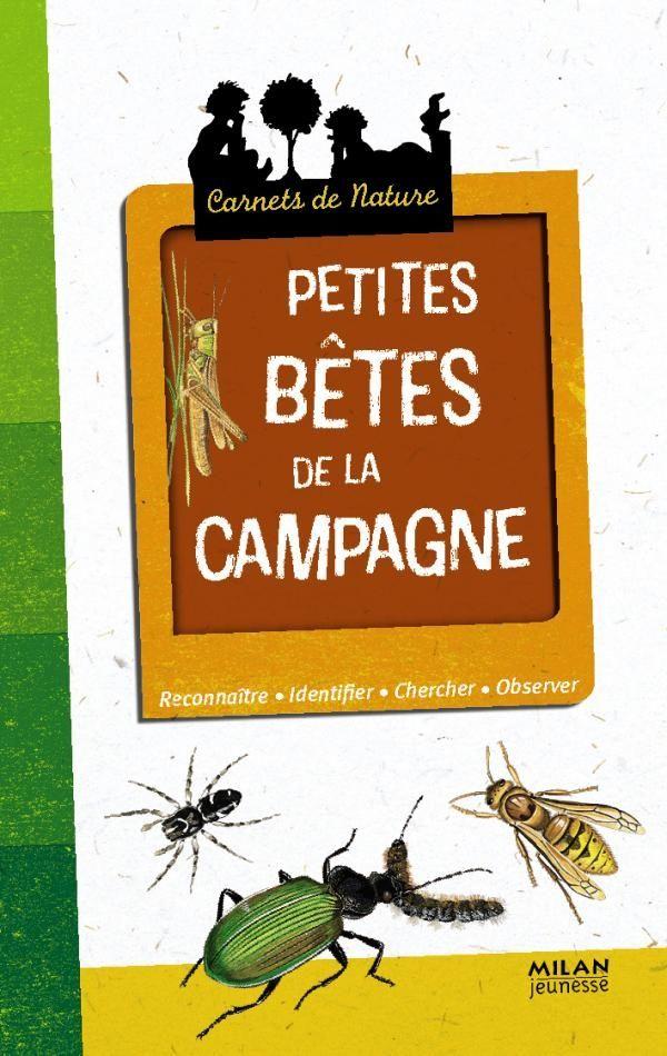 «Petites bêtes de la campagne» cover