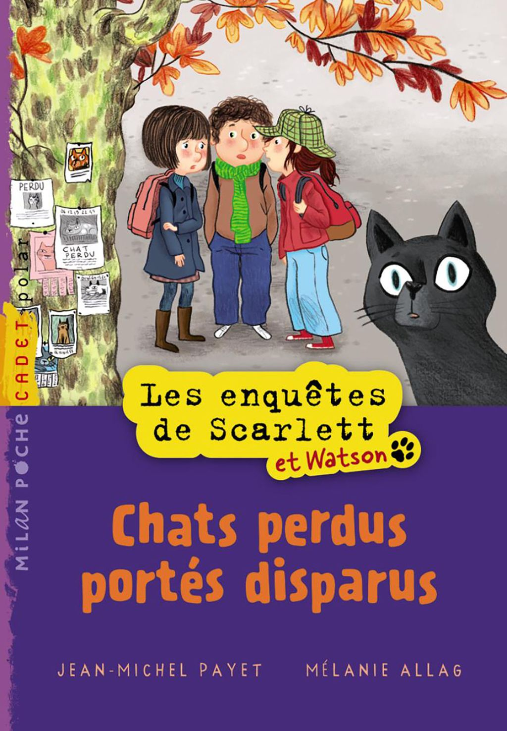 Couverture de « Chats perdus portés disparus »