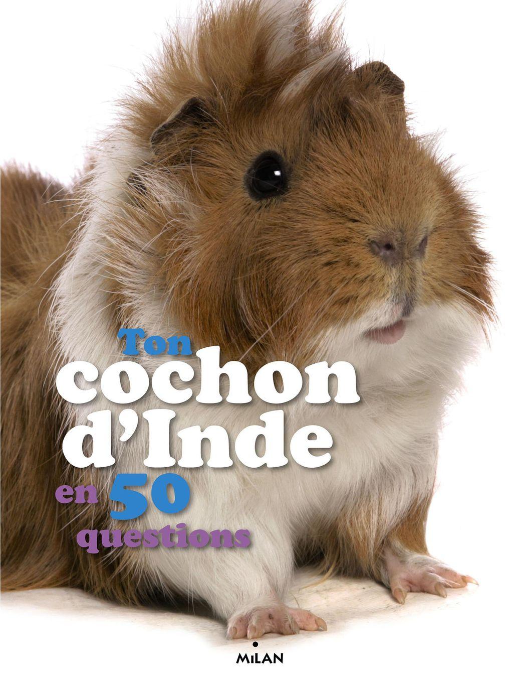 Couverture de «Ton cochon d'Inde en 50 questions»