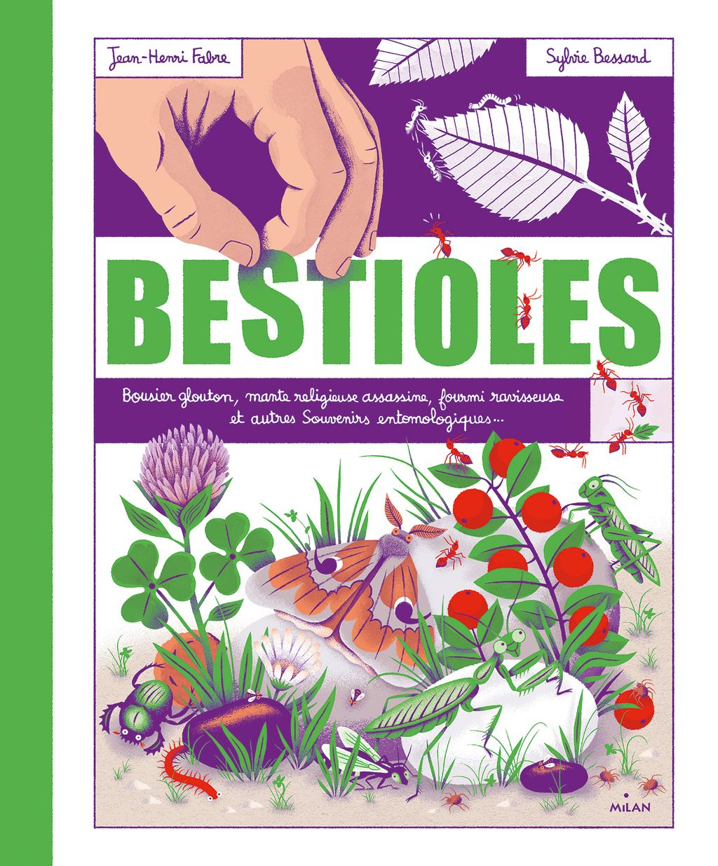 « Bestioles » cover