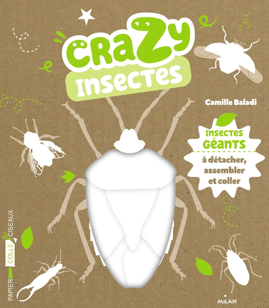 « Crazy insectes » cover