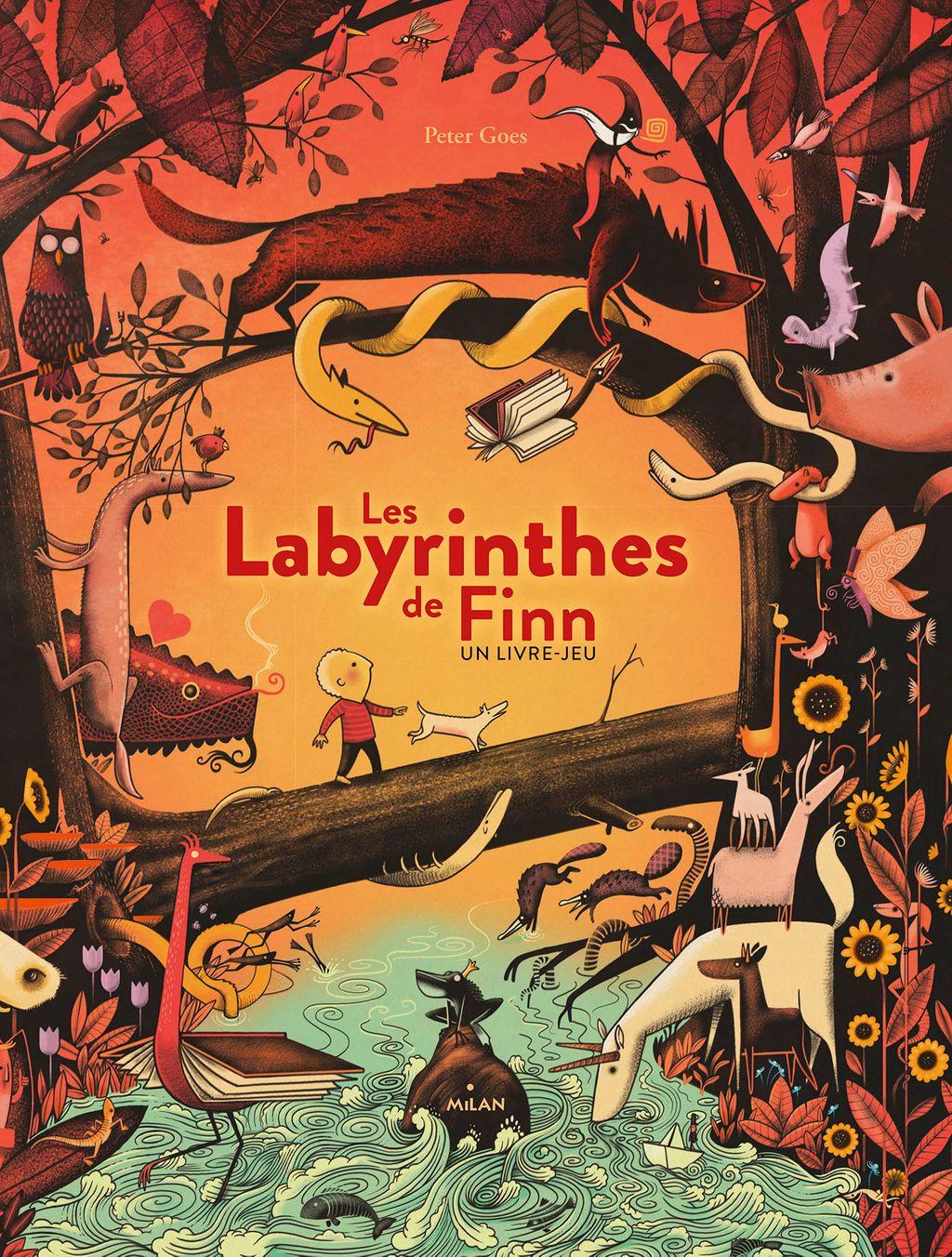 Couverture de «Les labyrinthes de Finn»