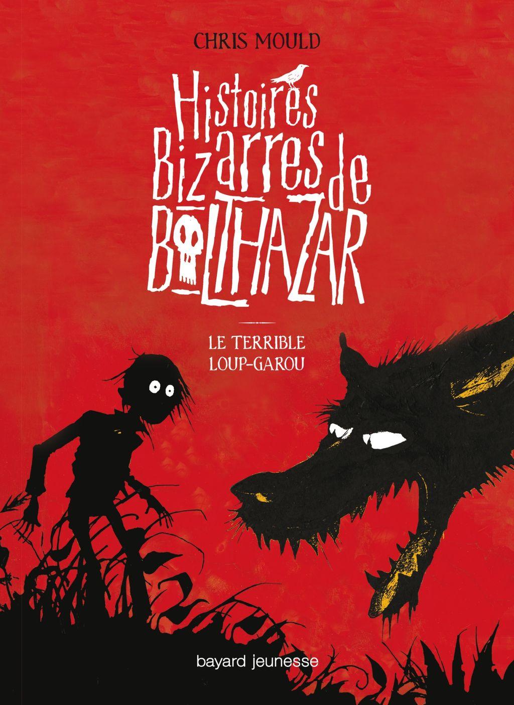 Couverture de «Le terrible loup-garou»