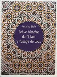 Couverture «BRÈVE HISTOIRE DE L'ISLAM À L'USAGE DE TOUS»