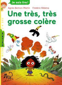 Cover of «Une très,  très grosse colère»
