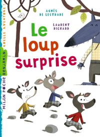 Cover of « Un loup surprise »
