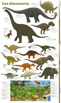 Couverture «Les dinosaures – poster»