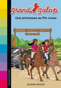 Couverture «Une princesse au Pin creux»