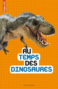 Cover of « Au temps des dinosaures »