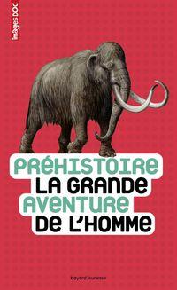 Cover of «Préhistoire, la grande aventure de l'homme»