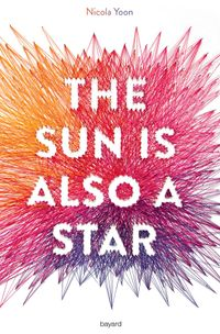Couverture « The sun is also a star »