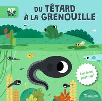 Couverture « Du têtard à la grenouille – Pop up »