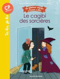 Cover of «Le cagibi des sorcières»