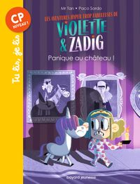 Cover of « Panique au chateau ! »