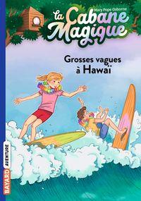 Couverture «Grosses vagues à Hawaï»