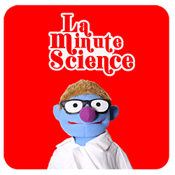 La Minute Science
