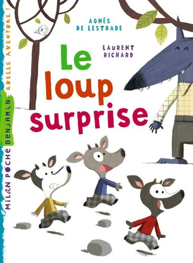Couverture de « Un loup surprise »