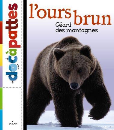 Couverture de «L'ours brun»