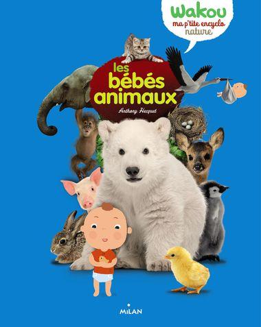 Couverture de «Les bébés animaux»