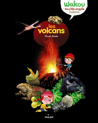 Couverture de «Les volcans»