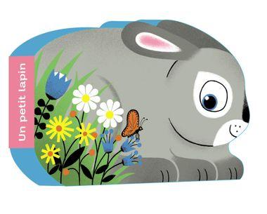 Couverture de «Un petit lapin»