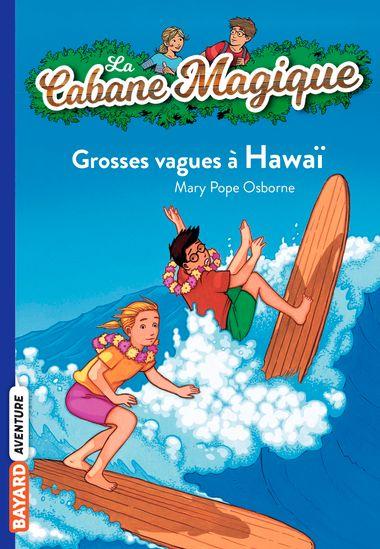 Couverture de «Grosses vagues à Hawaï»
