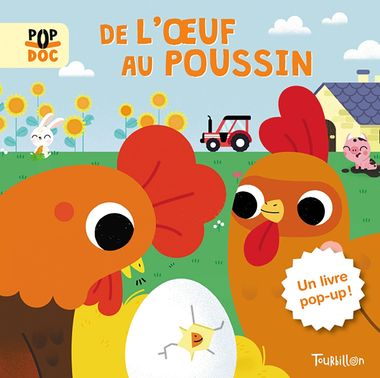 Couverture de « De l'oeuf au poussin – Pop up »
